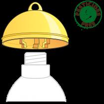 Cap-Fly trap